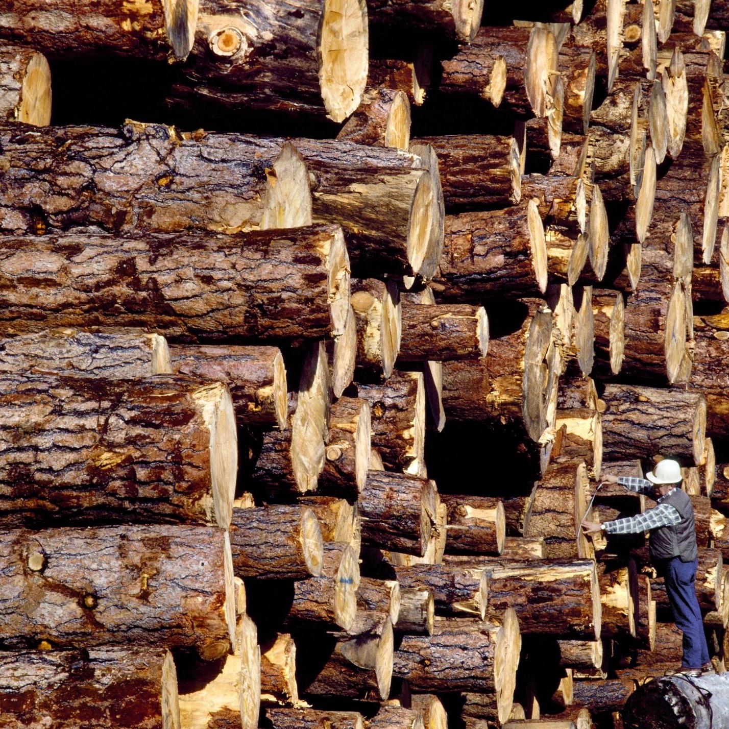 چوب طبیعی